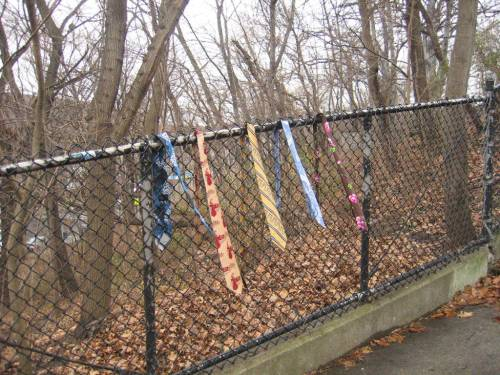 Ties on a Fence 2